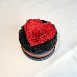 Dekoration RosesPassion