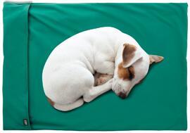 Hundebedarf Knauder's Best