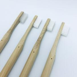Brosses à dents Nappilla
