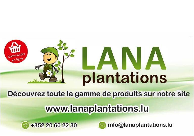 Lana Plantations Esch-sur-Alzette