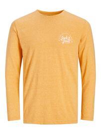 T-Shirt 1/2 Arm JACK&JONES