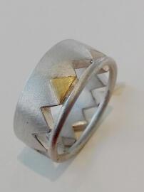 Ringe Gallenmüller