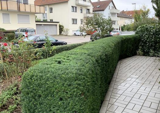 DS Dienstleistungen Garten und Landschaftspflege