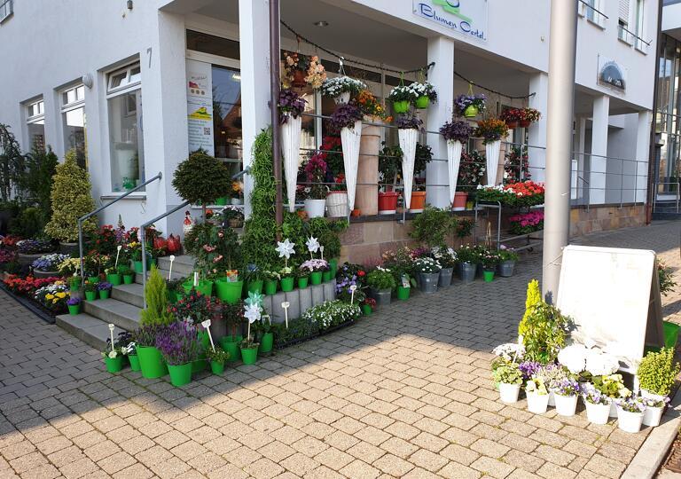 Blumen Oertel Neuhausen
